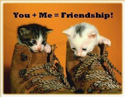 Friends 5