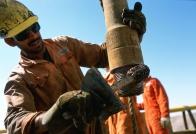 Omani Worker 2